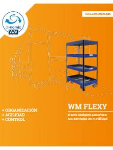 Carros inteligentes WM Flexy